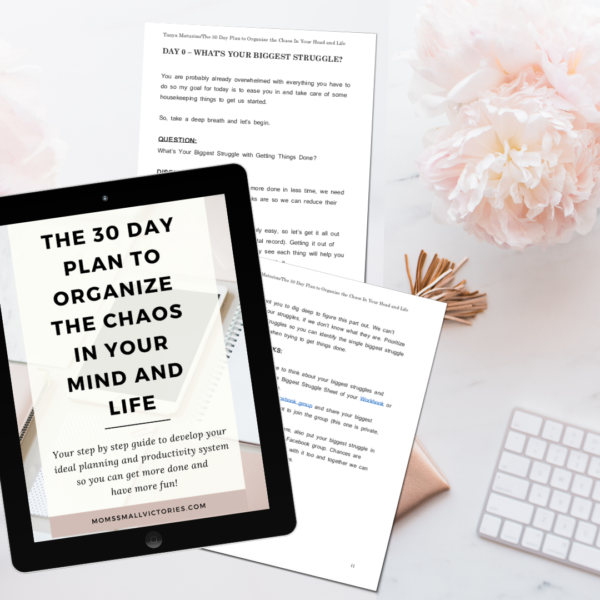 The 30- Day Plan to Organize the Chaos in Your Mind and Life E-book walks you through 30 step-by-step tasks to developing your ideal planning and productivity system for your life and work.