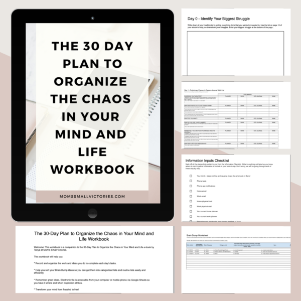 The 30 day plan to organize the chaos in your mind and life companion workbook on Google Sheets or print